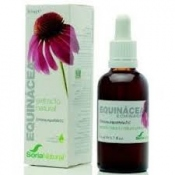 Extracto de Equinacea 50ml Soria Natural