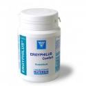 Ergyphilus confort 60cap Nutergia