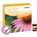 Imunit Derbos