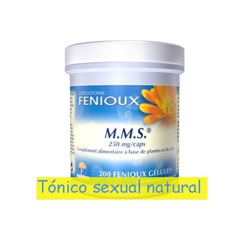 MMS Fenioux