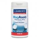MagAsorb magnesio 60 tab Lamberts